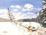 Winter Lake2 - Copy