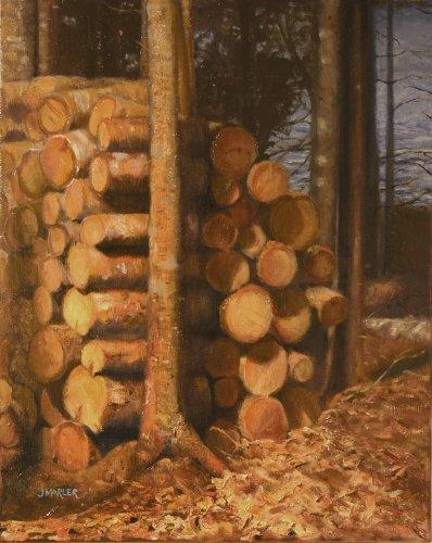 Woodpile 16 x 20