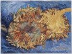 Sunflowers-Van-Gogh-12x9